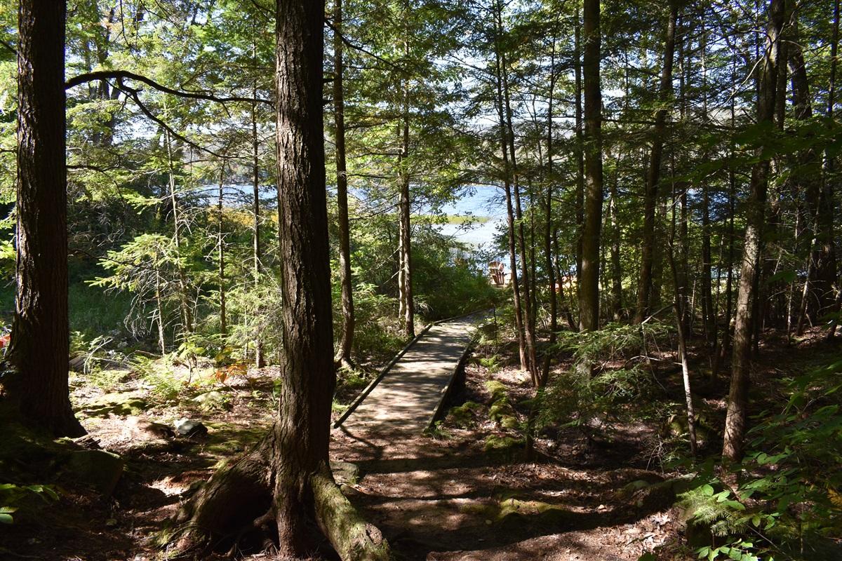 Path to Lake