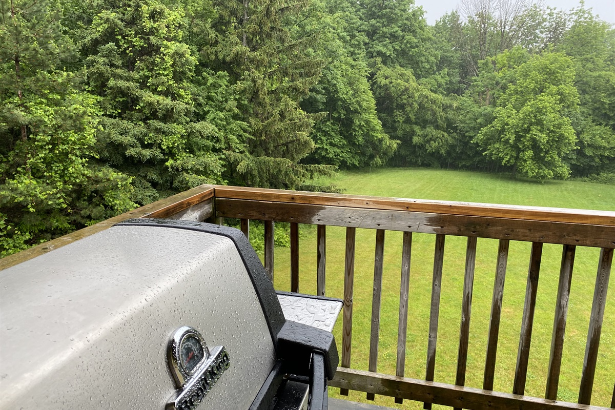 """""""Bear"""" - Boril King BBQ overlooking the backyard and forest"""
