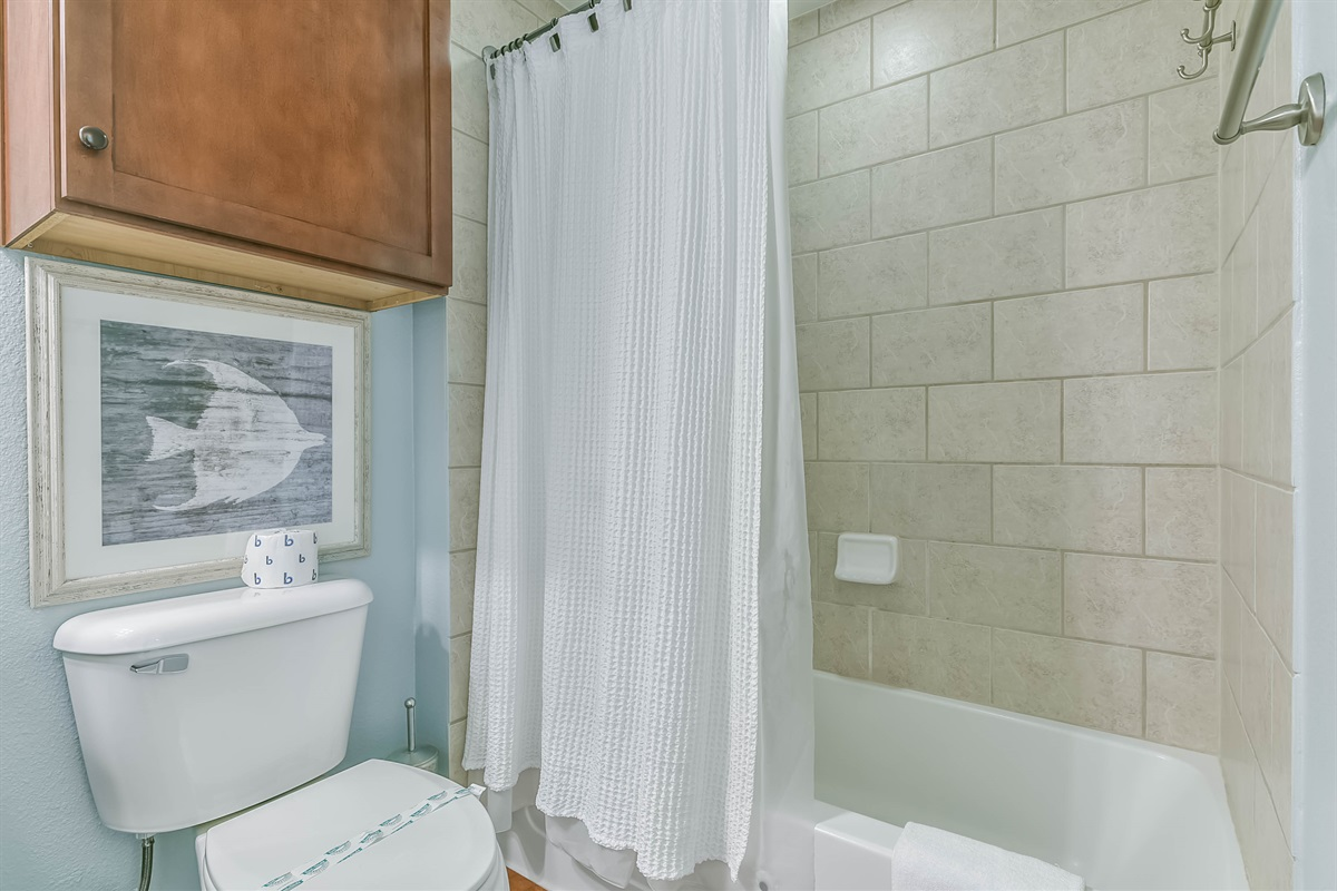 Guest Shower/Tub Combo