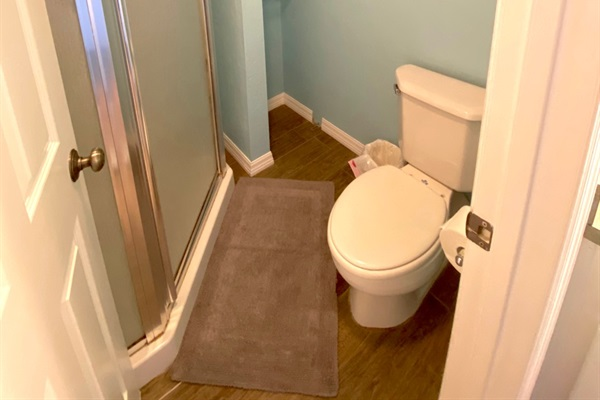 Separate shower and toilet closet