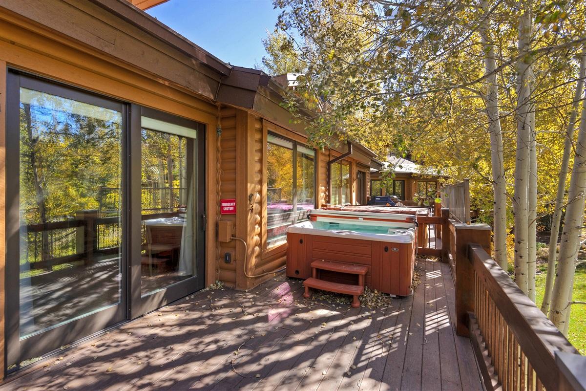 Private deck/hot-tub