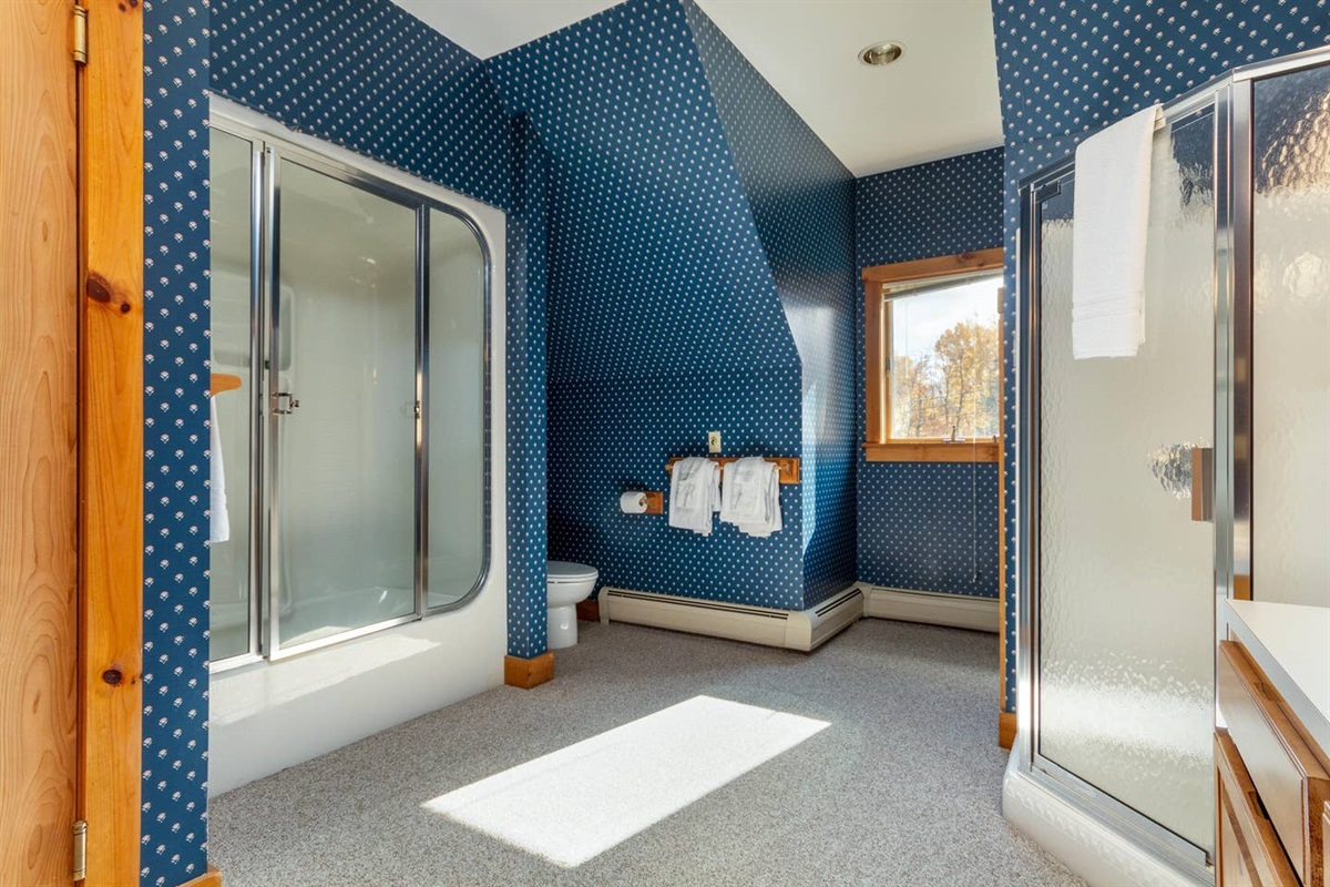 Master ensuite: 2 showers, 2 vanity stations, a tub and a sauna