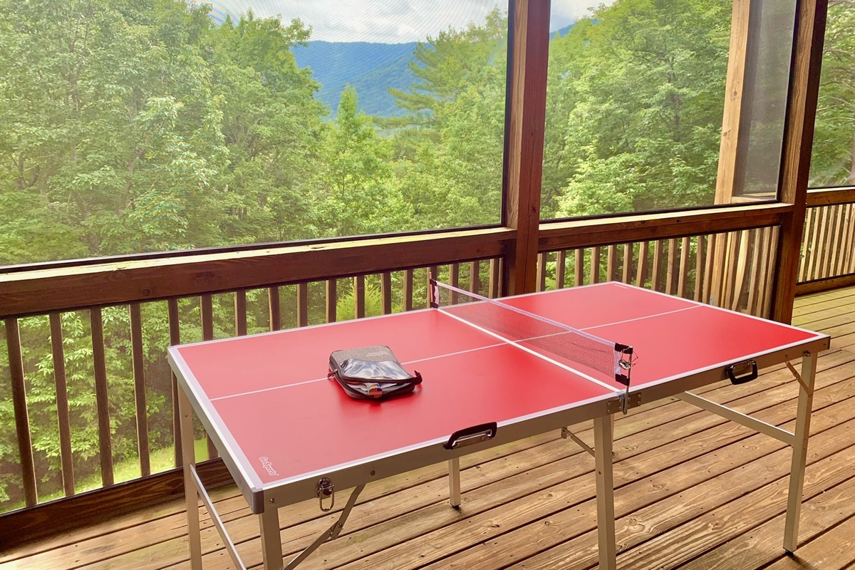 Ping Pong Table on Terrace Level Deck with Screened Porch
