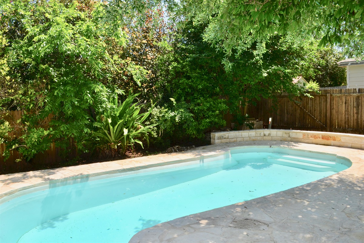 Backyard pool paradise!