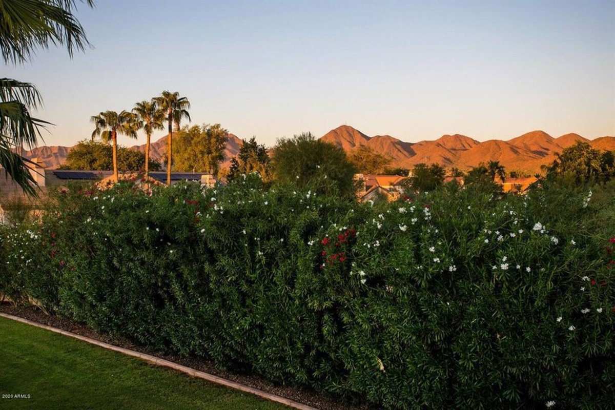 Mind Boggling View of the McDowell Mountain Views Grand
