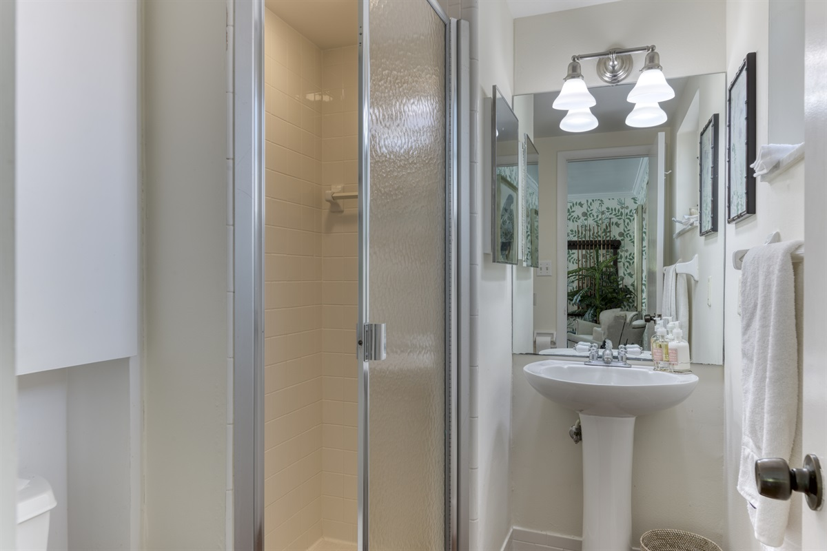 2nd bathroom downstairs with shower.