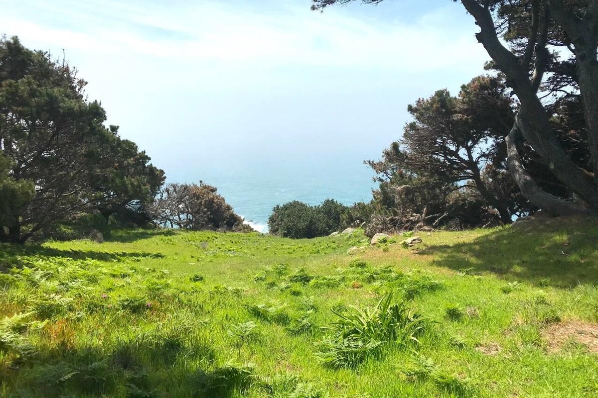 Ocean Bluff Serenity Patio to Ocean View