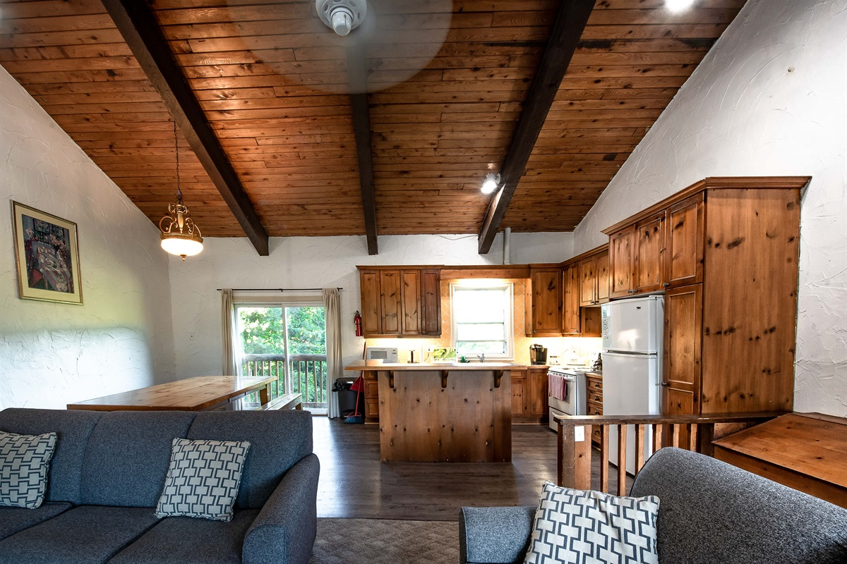 Open concept living, dining & kitchen