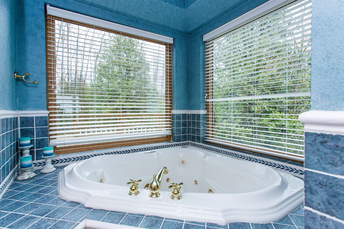 Scenic views even from the tub!