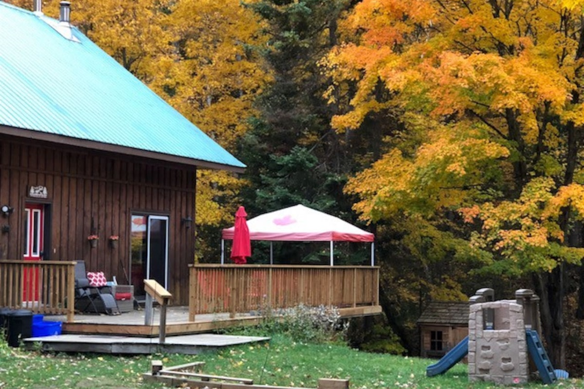 The cottage is getting surrounded by the beautiful Fall colours