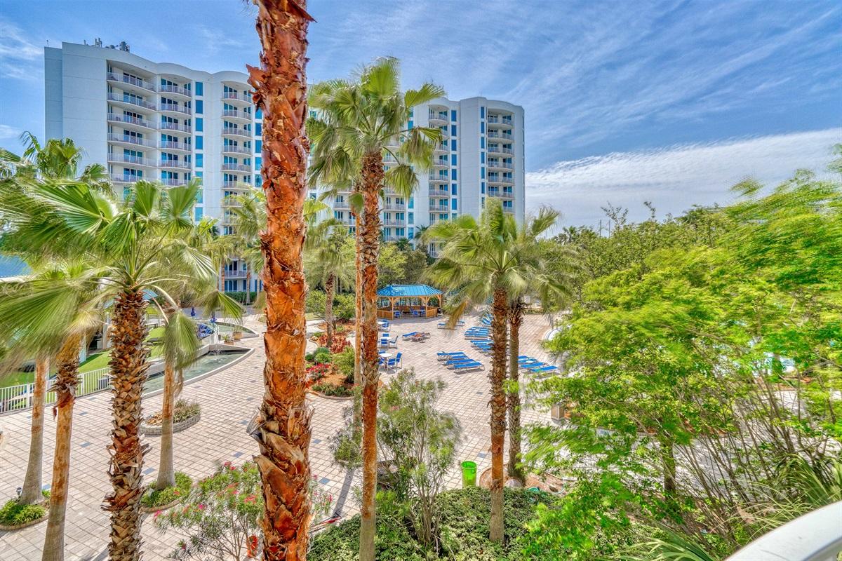 Lush palms surrounding the resort