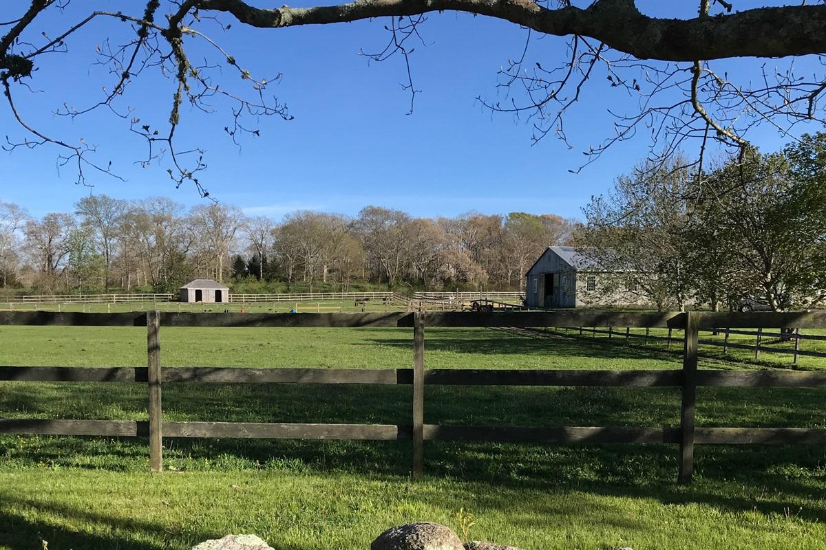 Arrowhead Farm - Horse Riding