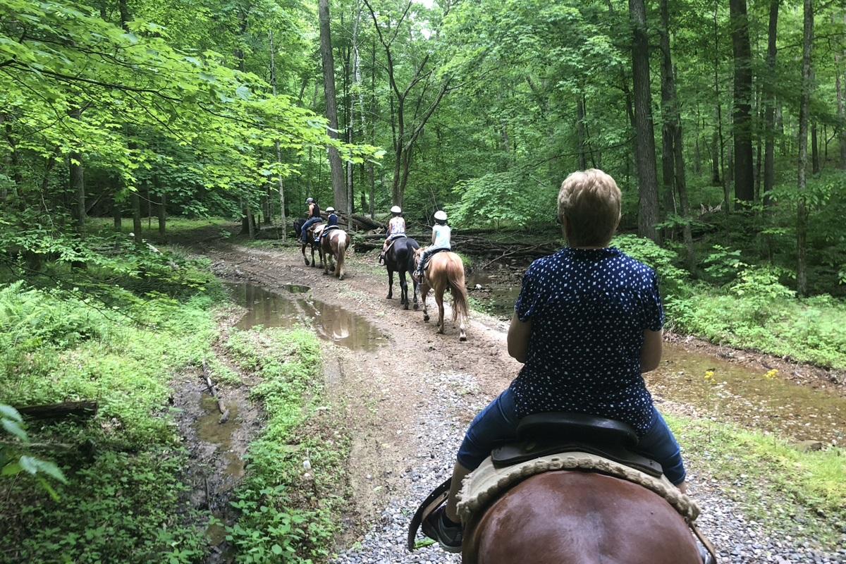 Giant City Stables horseback riding