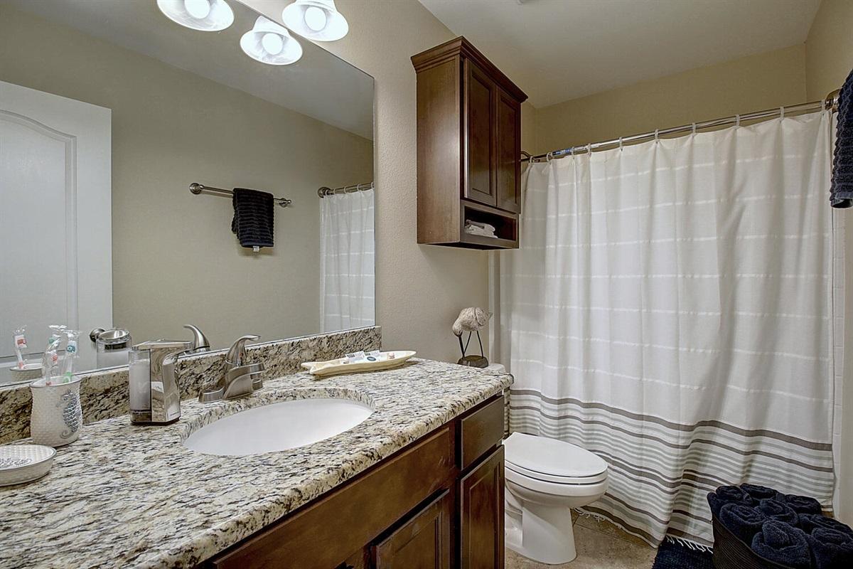 Hall Bathroom:  Tub/Shower Combination