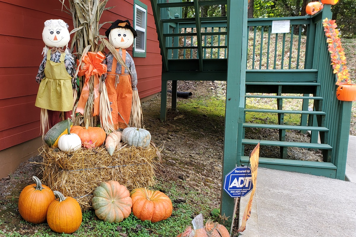 Welcome our Fall guests!