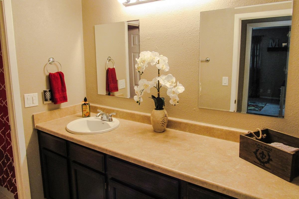 Master bath (en-suite).