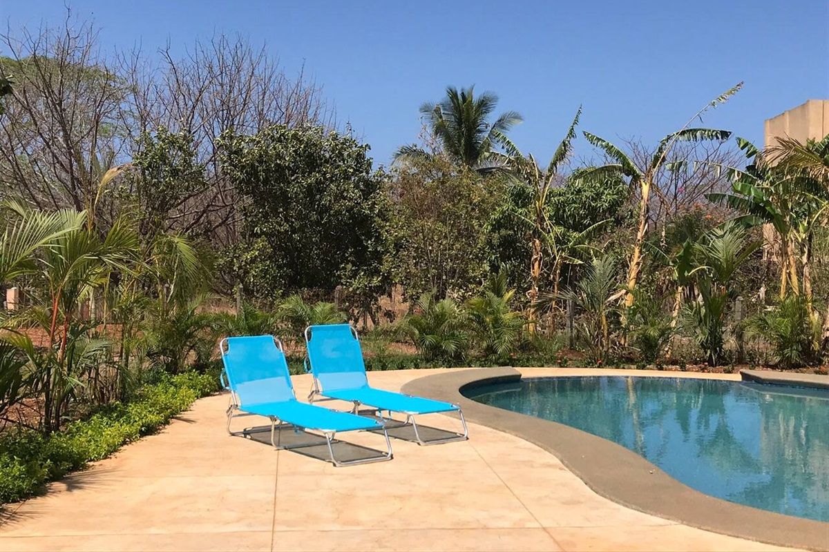 Relax by the pool in one of the loungers