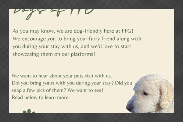 @friendlyfiresgetaway
