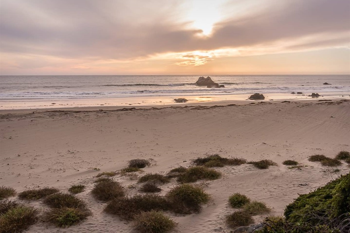 Stretch of sandy beach