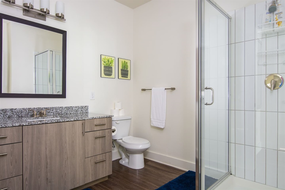 Sparkling clean bathroom with shampoo, conditioner, and body wash provided.  Fresh towels stocked for you as well!