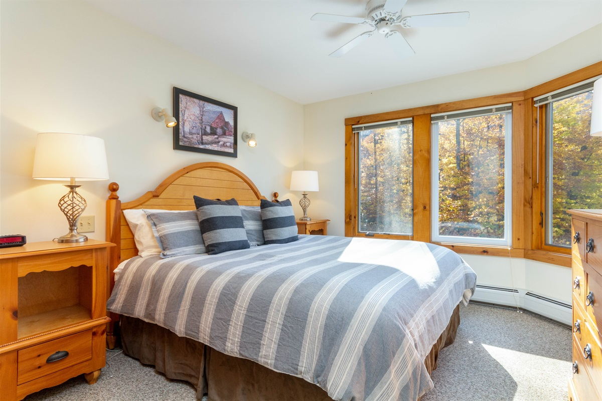 Master bedroom - tranquil to wake in.