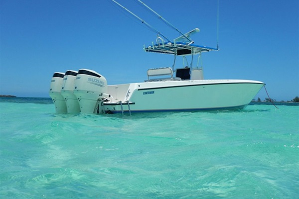 Many nearby offshore fishing charters to choose from.