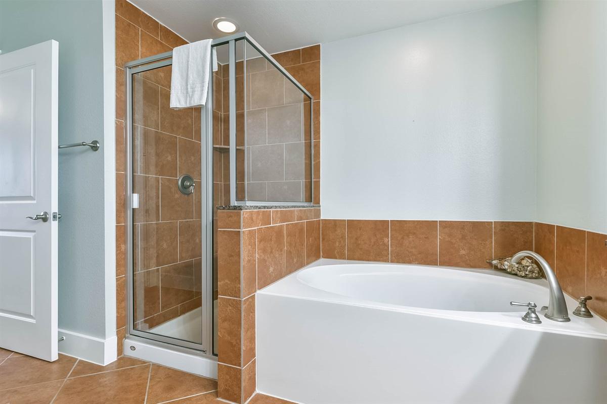 Master En Suite Shower & Bath Tub