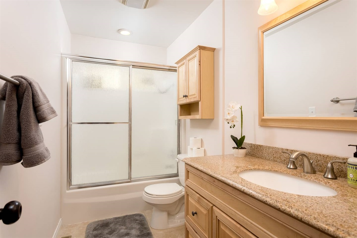 Bathroom #2: Full bathroom next to the living room with hairdryer, shower, & bath tub.