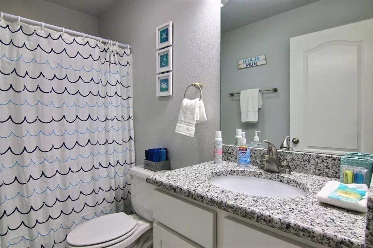 Hall bathroom - tub & shower combo.
