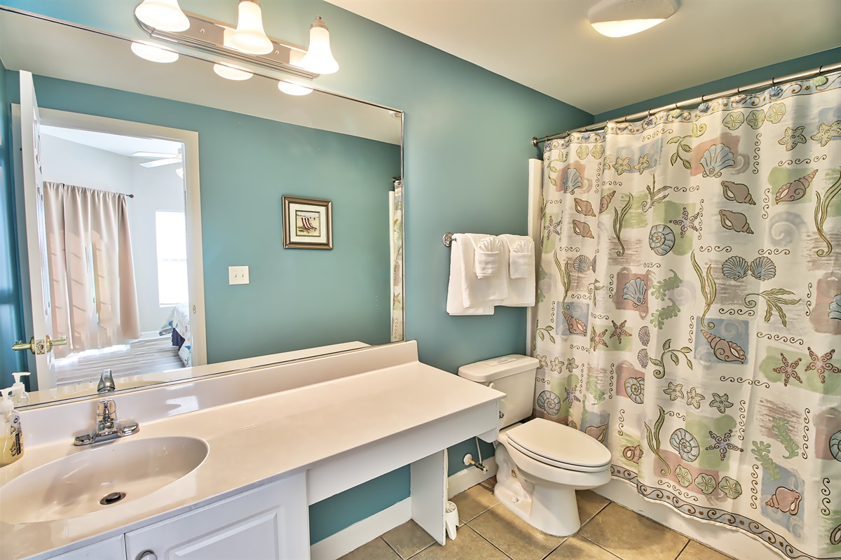 2nd master tub and shower