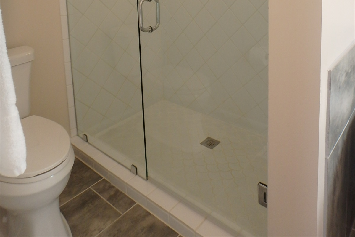 Walk in shower in completely renovated master bath