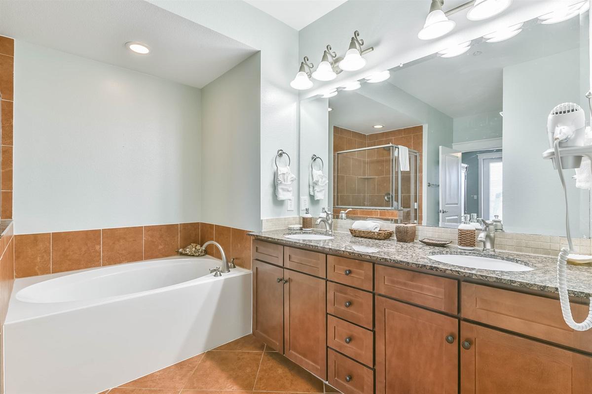 Master En Suite Bath Tub & Vanity
