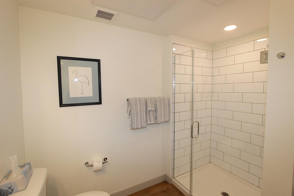 Easy Access/Walk Shower.