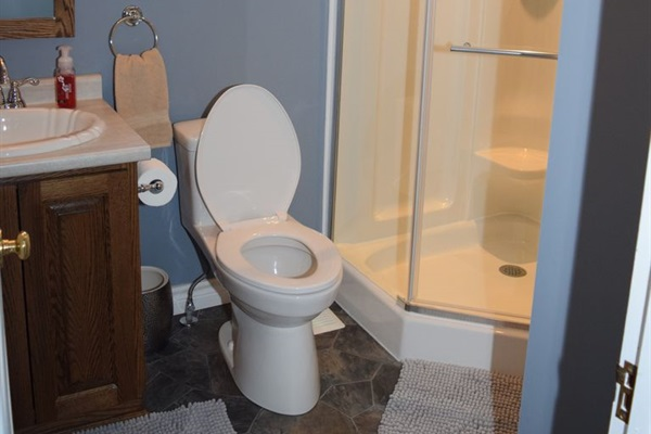 Bathroom #2, located off the living room and beside the guest room