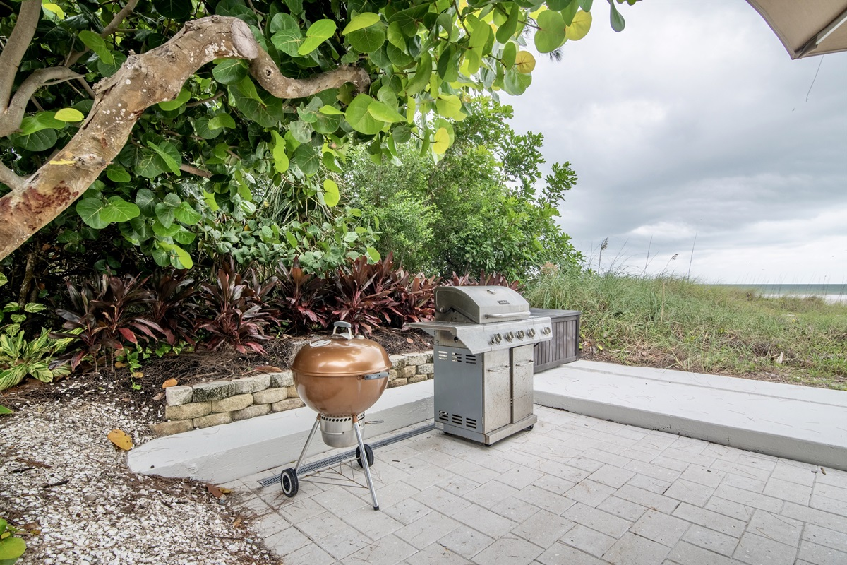Charcoal and gas BBQ grills