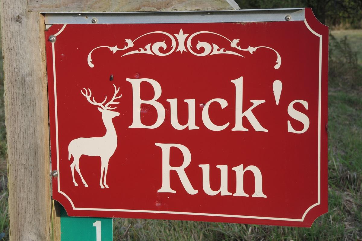 Buck's Run sign at road