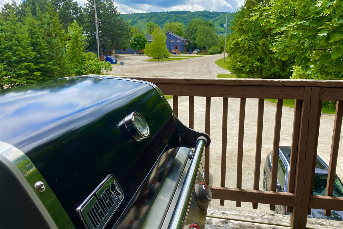 Weber gas BBQ with the view of Blue Mountain