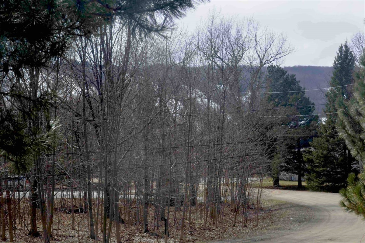 View of the Blue Mountain ski hills from the front window