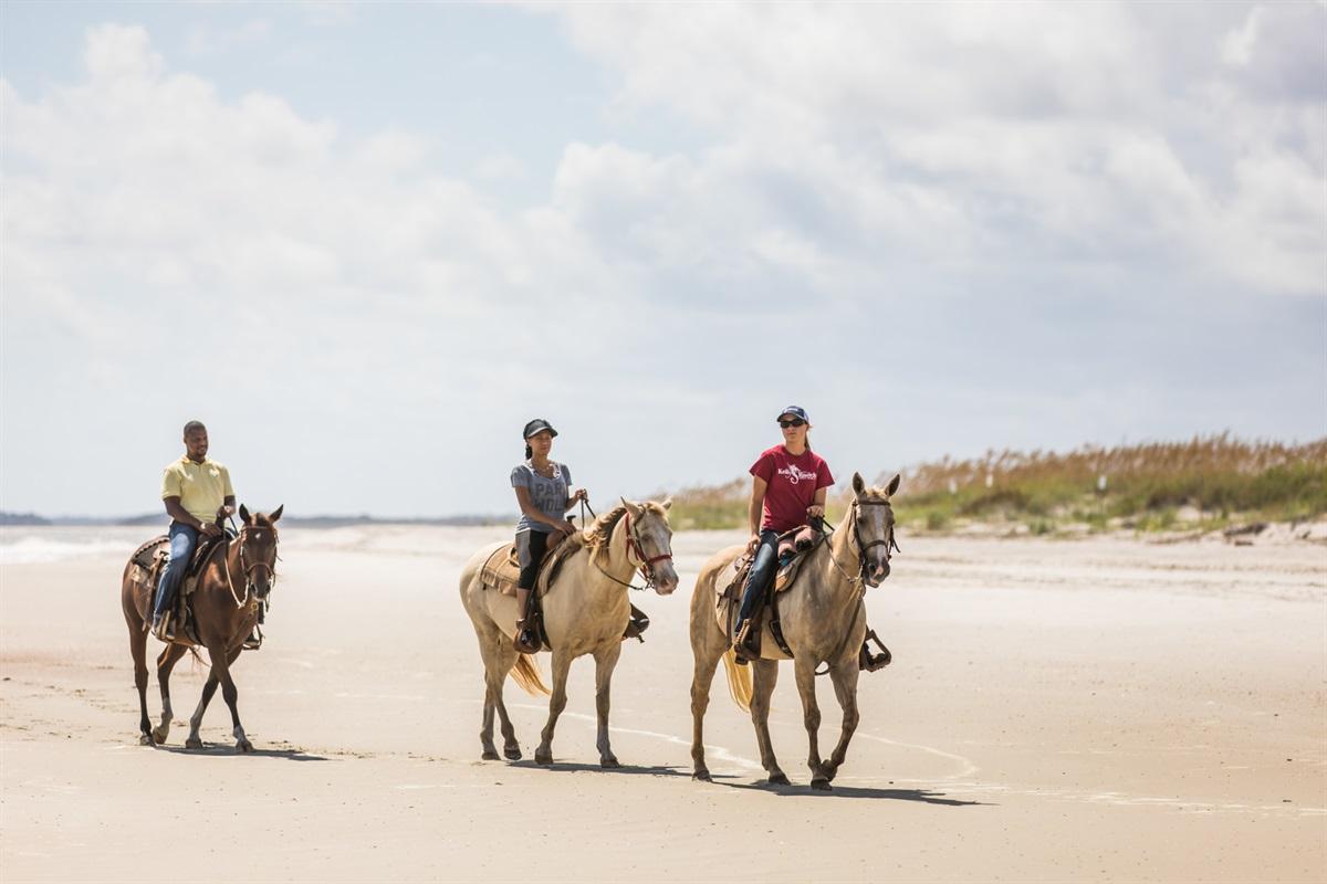 Horseback Riding on our Beaches