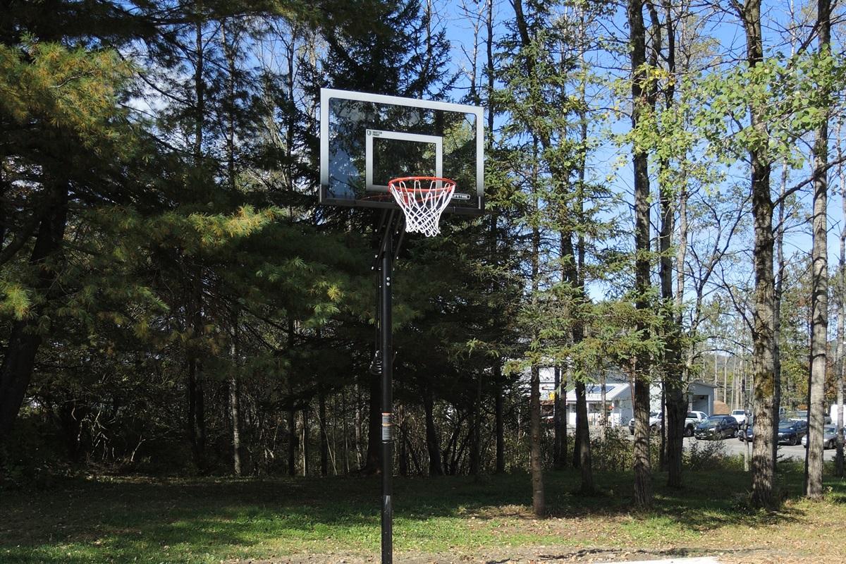 Basketball hoop and paved court