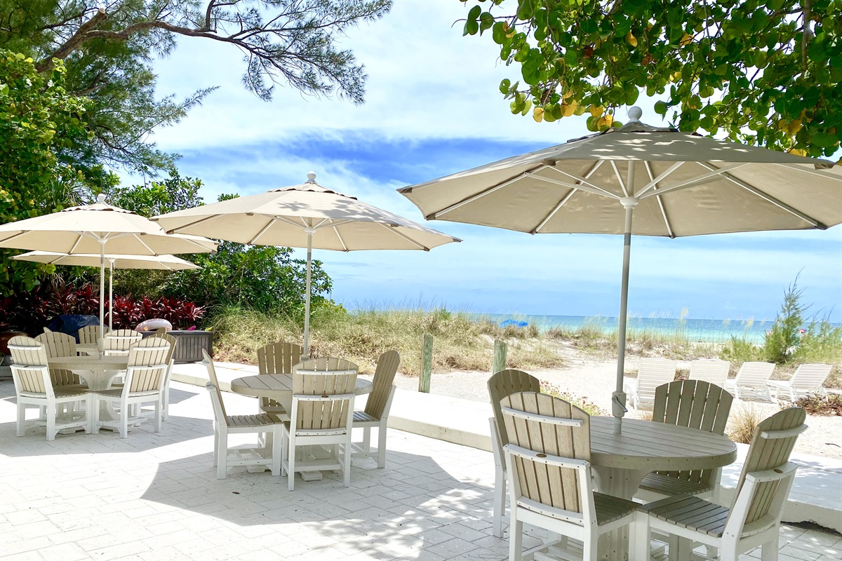 Beautiful shade under the seagrape trees at Sailfish Gulf Suites
