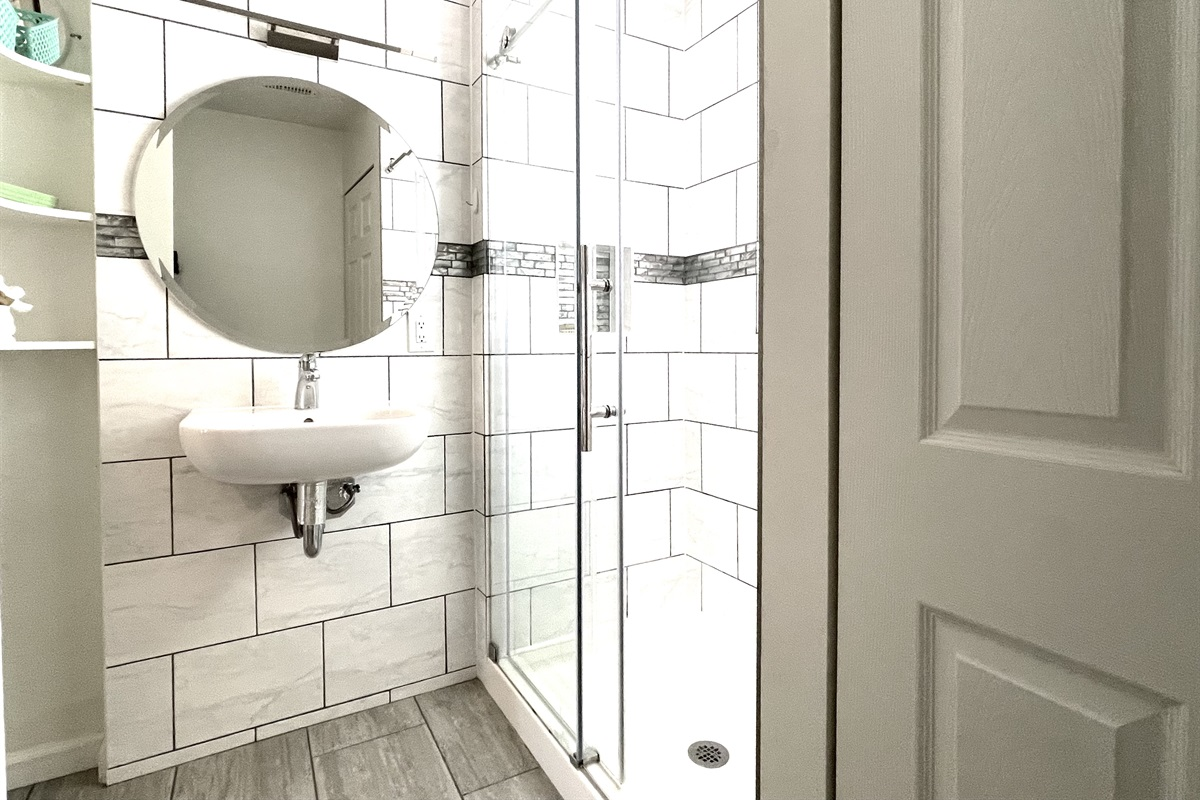 Huge walk-in shower, (shelving over commode not seen in this photo.)