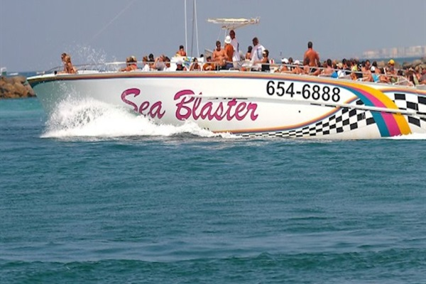 (1) Free Dolphin Cruise on the SeaBlaster Each Day