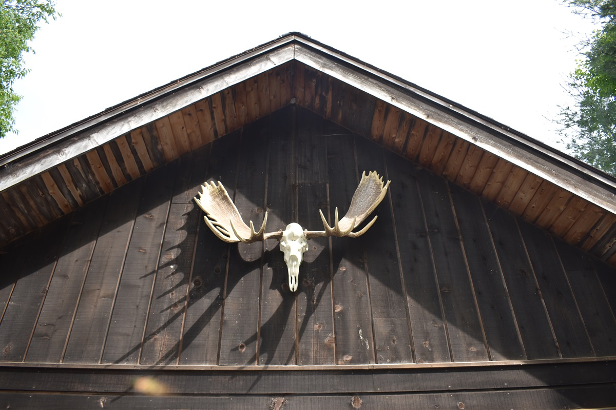 The Moose Watches Over The 2-Bay Garage