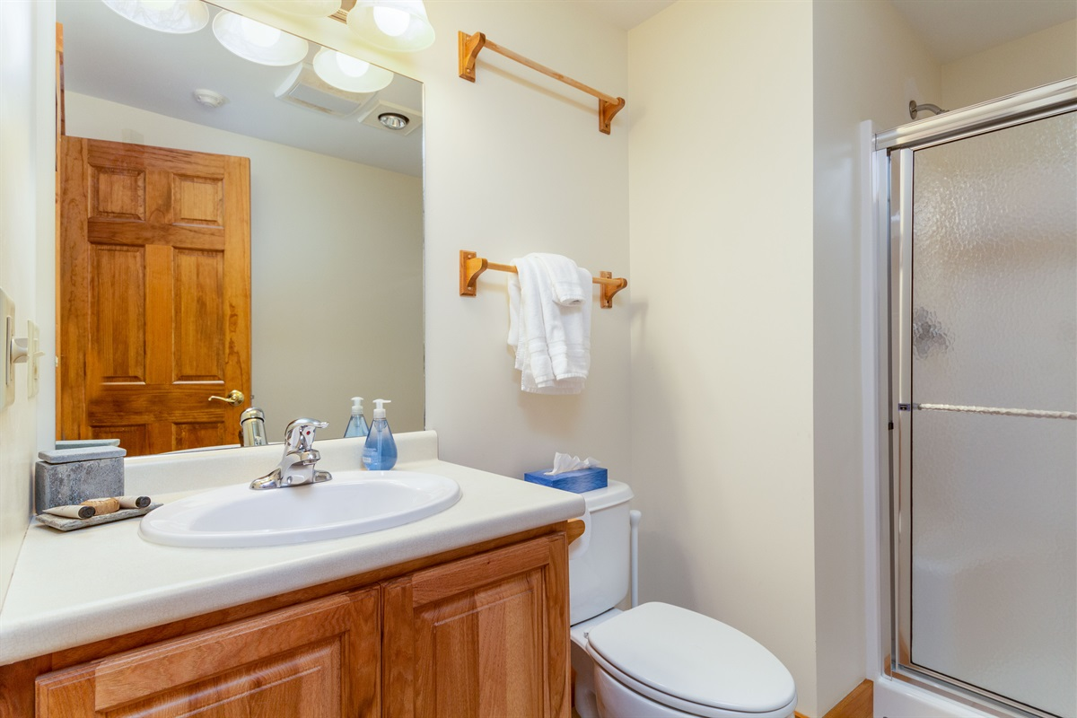 Master ensuite - full bath with walk in shower