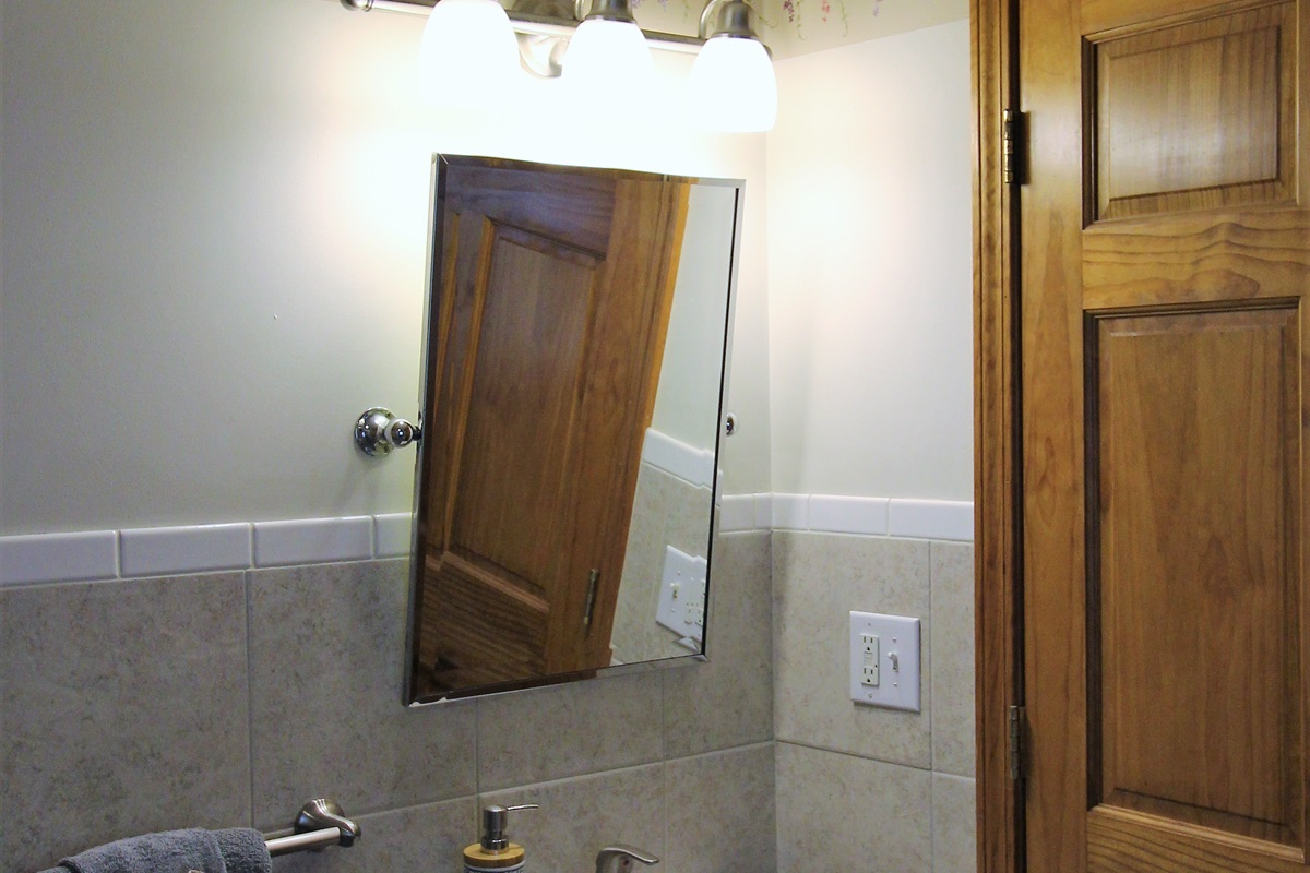 Handicapped accessible bathroom in bedroom #1