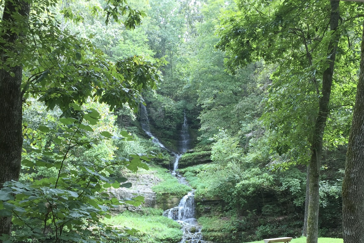 Head to Dogwood Canyon, where you can hike, bike (bring your own, or rent), take an amazing tram tour, and so much more.
