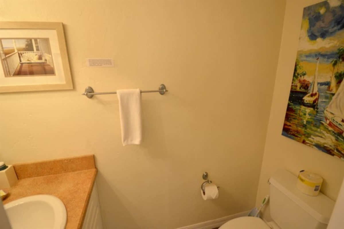 Hall bath for guests