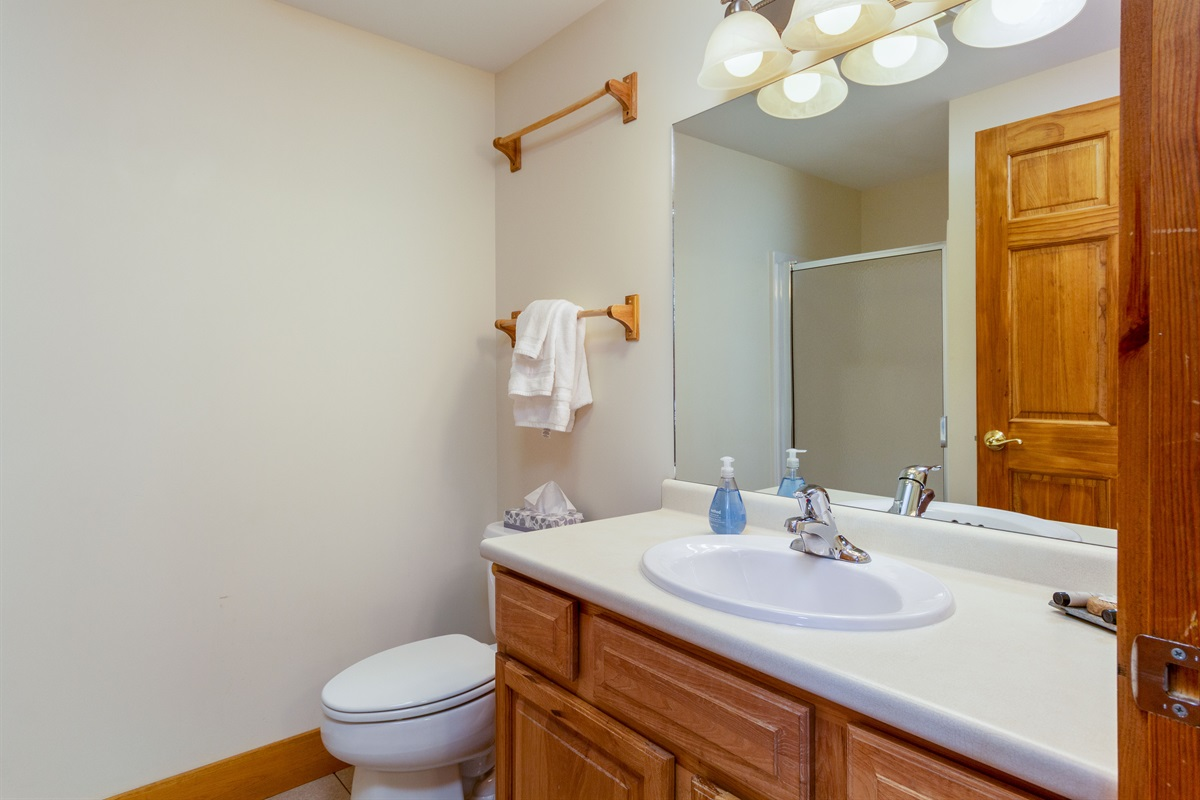 Second bathroom.  Access from outside the second bedroom.