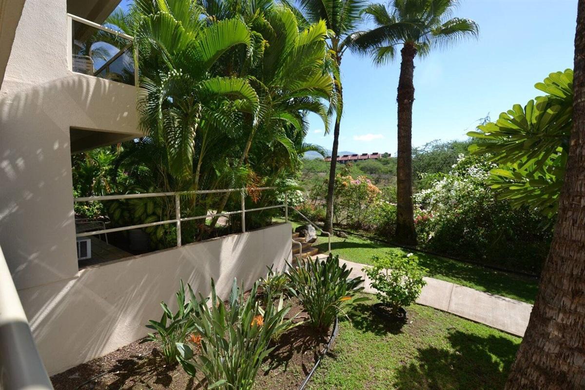 Lanai overlooks the tropical garden